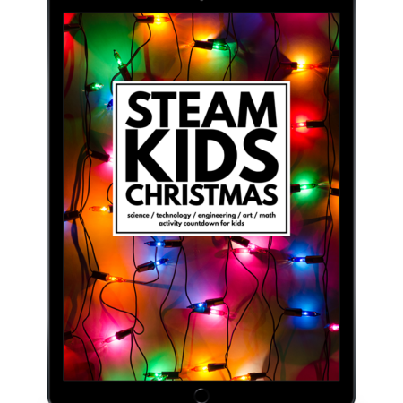sk-xmas-ipad-transparent-background-800x960