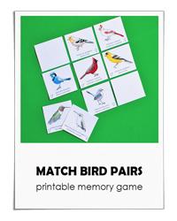 Math-Bird-Pairs---Adventure-in-a-Box-200x250