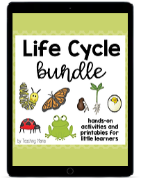 Life Cycle Bundle ipad